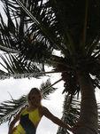 ISWT_styleguide_beach_yellowmood.jpg