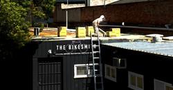 Rooftop beekeeping.jpg
