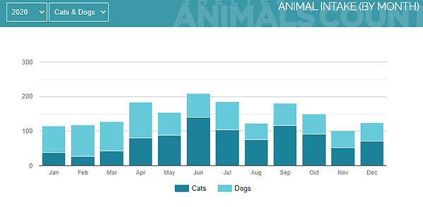 2020 Animal Intake by Month.PNG