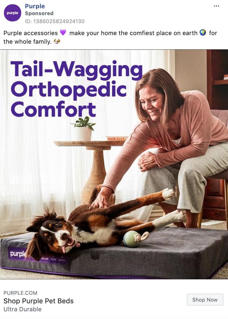 Purple Lifestyle Static Image Ad
