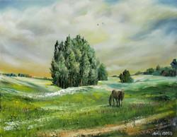 Landscape whith a horse. Belorus
