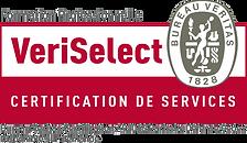 VeriSelect-FormationPro-1.png