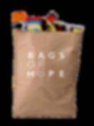 Bag of Food.png