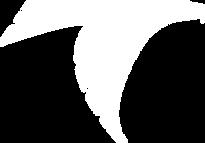 Falcon - White.png