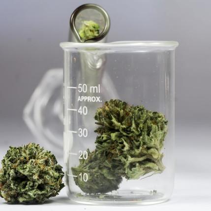 cannabis-science-1024x683.jpg