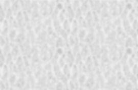 Web designer glasgow florist logo design