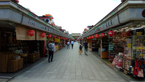 Walking through the famous shopping street