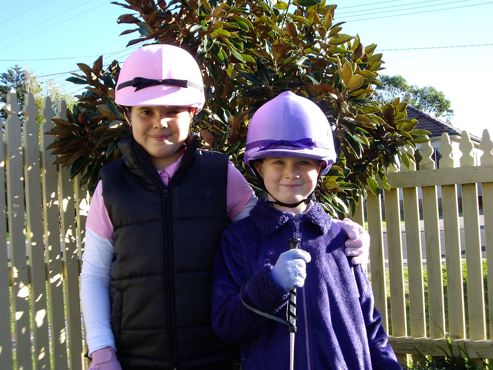 Equestrian Helmet Covers