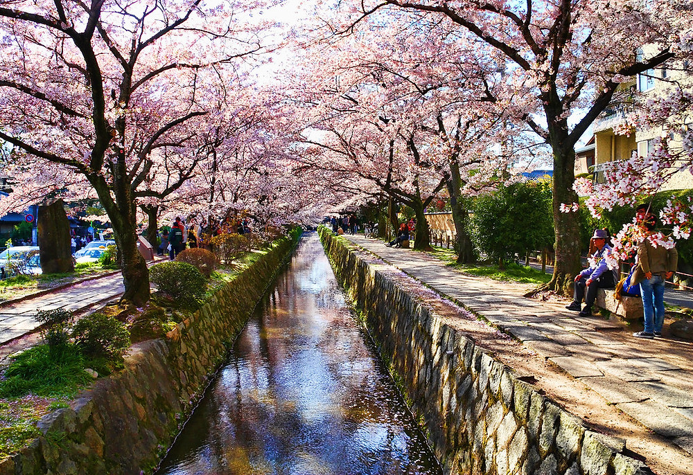 Top 15 Places to Visit in Kyoto, Japan
