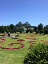 Schonbrunn gardens.jpg