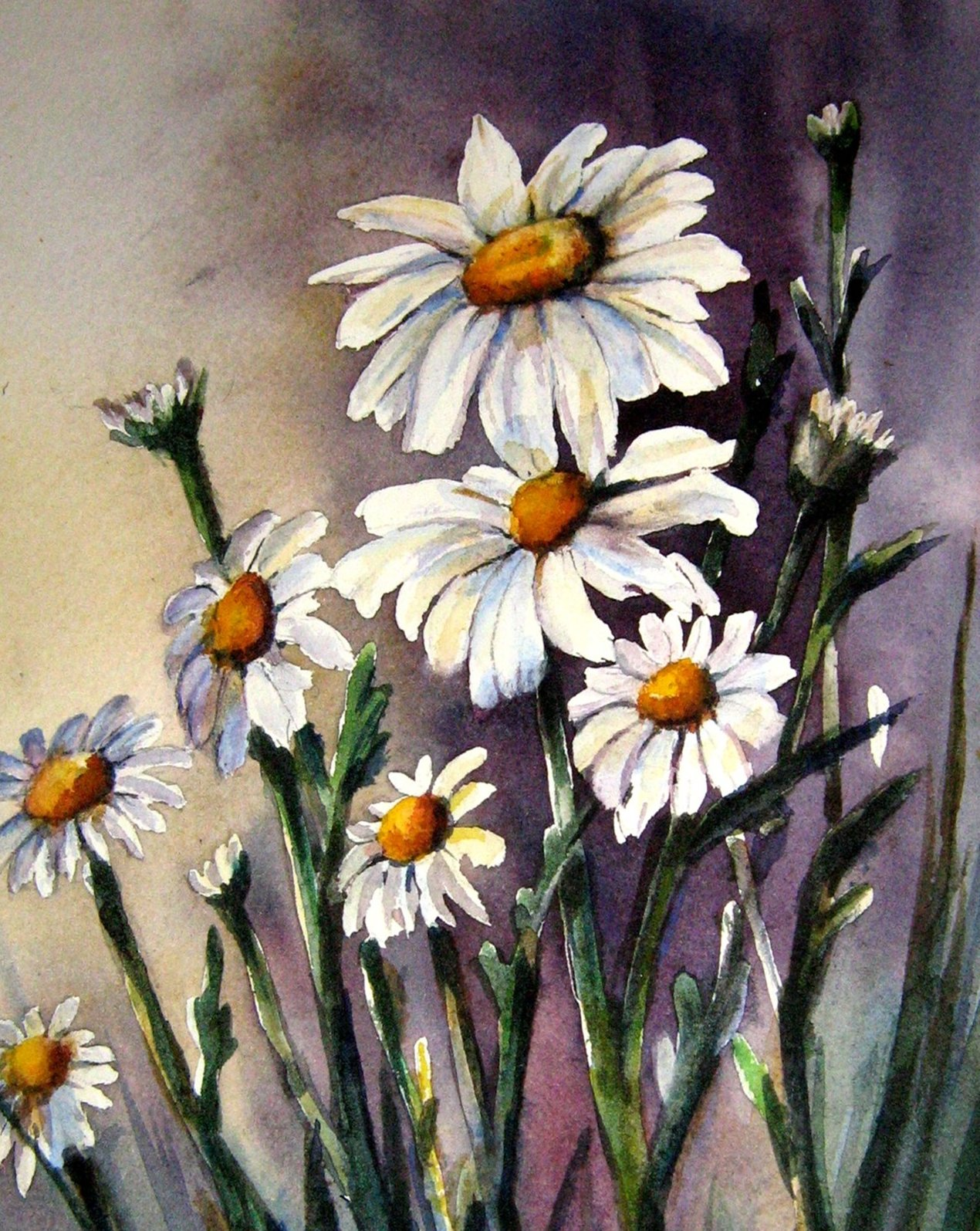 DAISY FRIENDS