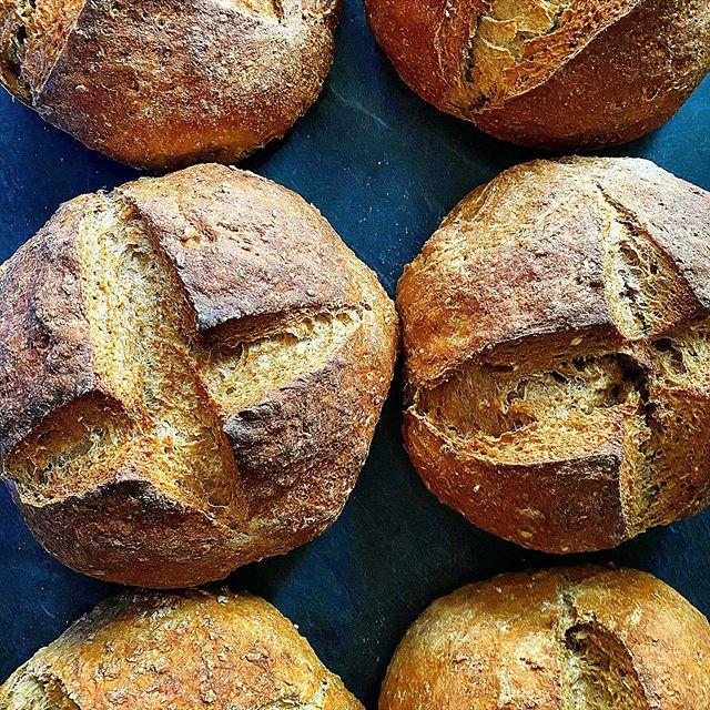 Oat & Wheat Sourdough  #oats #oat #oatbr