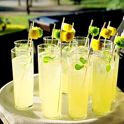 121807_Cammerer_400x400 drinks 2.jpg