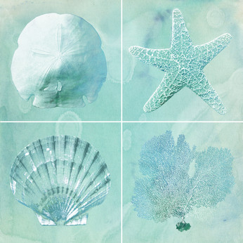 Sea Life in Blues