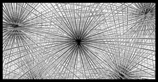 Web of Design