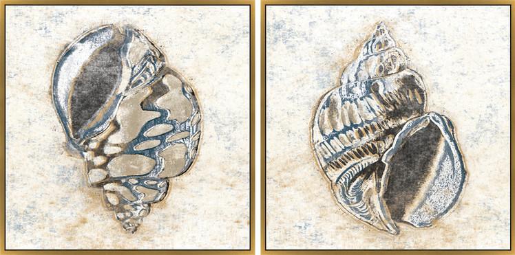 Seashells I & II