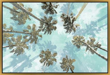Palm Tree Nap