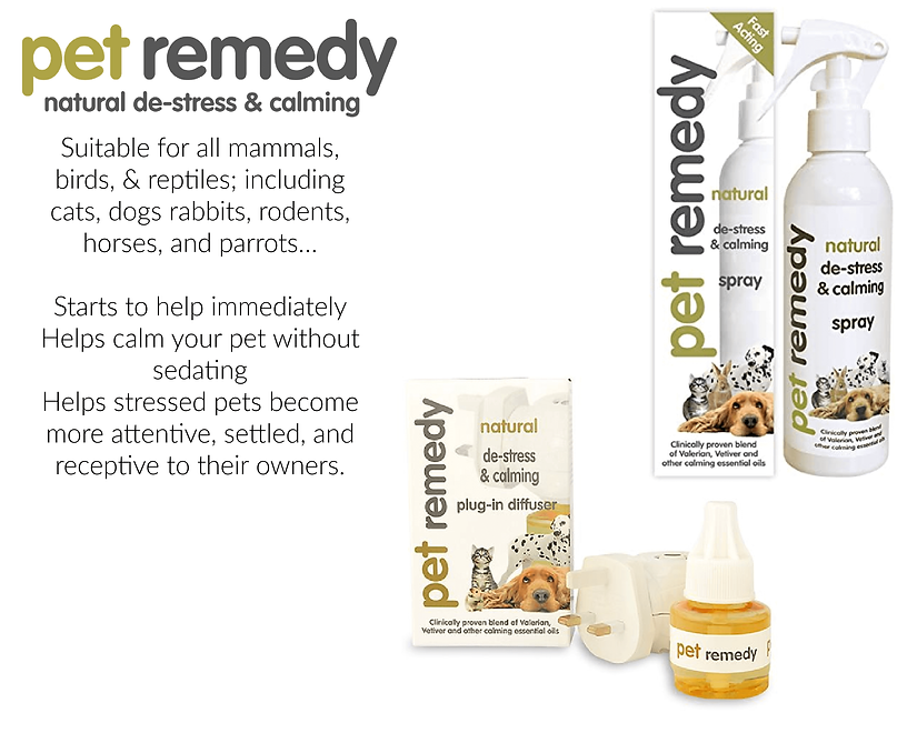 Pet Remedy at the top dog store