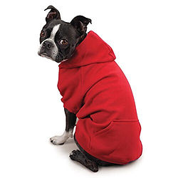 Hoodie for dogs at the top dog store