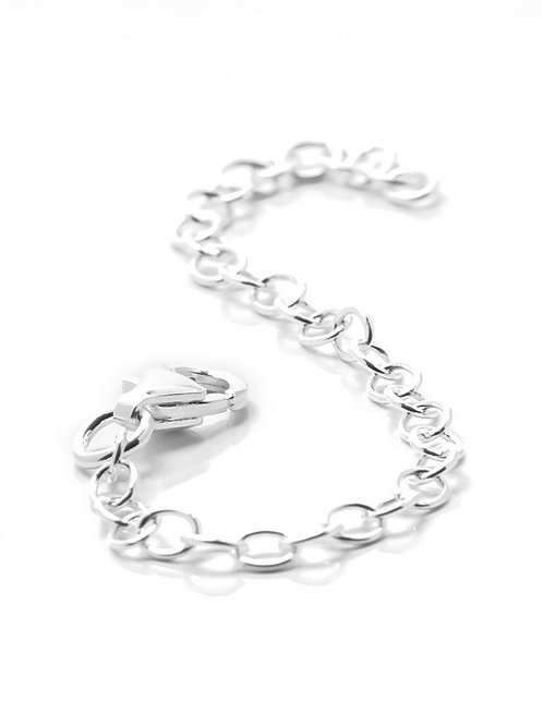 Silver Extender Chain