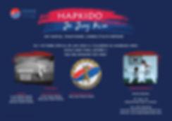Affiche-Hapkido-v2.jpg