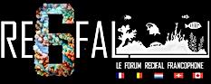 Forum Re6fal