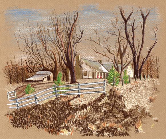 Tennessee_Illustration.jpg
