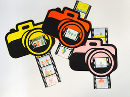 Flitsende camera's
