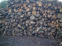 bois de chauffage Feurs Loire 42