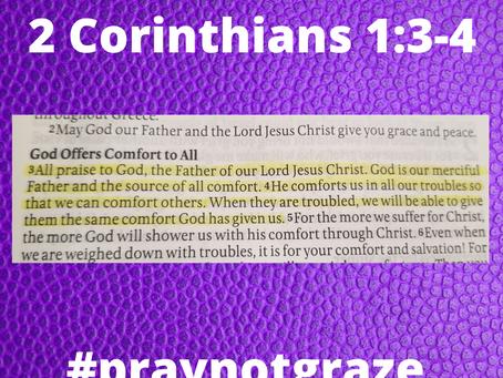 Pray Not Graze