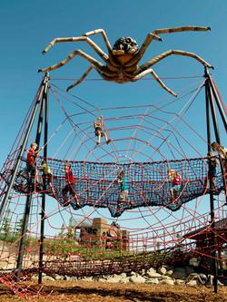 GR Arachnid for Web V 4