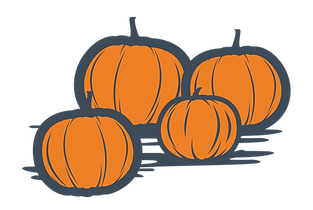 Granary Road Pumpkin Fest Web Pumpkins 1