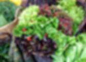 GR Aquaponics Cart Image for Web 2.jpg