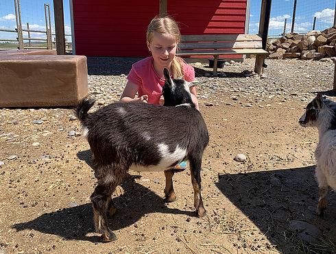 GR Goat Birthday Party for Web.jpg