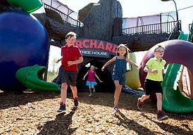 GR Orchard Video  Image 1.jpg