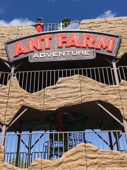 GR Ant Farm for Web V 7