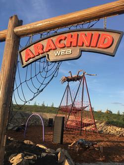 GR Arachnid for Web V 3