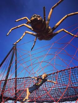 GR Arachnid for Web V 1
