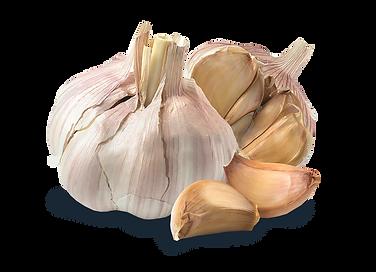 Garlic Bulgs.png