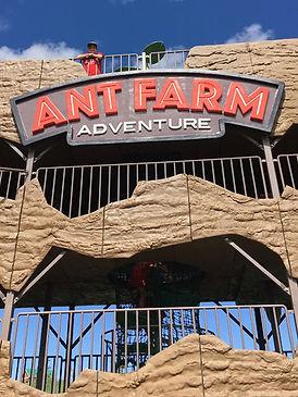 GR Ant Farm for Web V 7.jpg