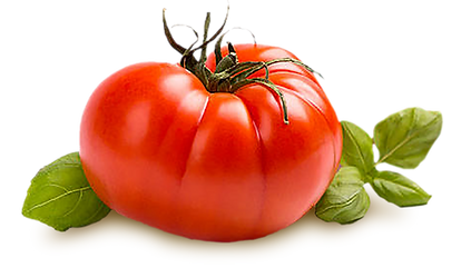 Granary Road Fresh Farmer Tomato & Basil