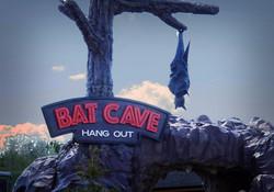 GR Bat Video Image 2