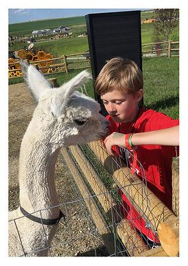 GR Farm Friends Image 1.jpg