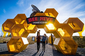 GR Bee Hive Honey Comb Hero for Web.jpg