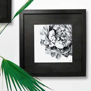 Florals Peony.jpg