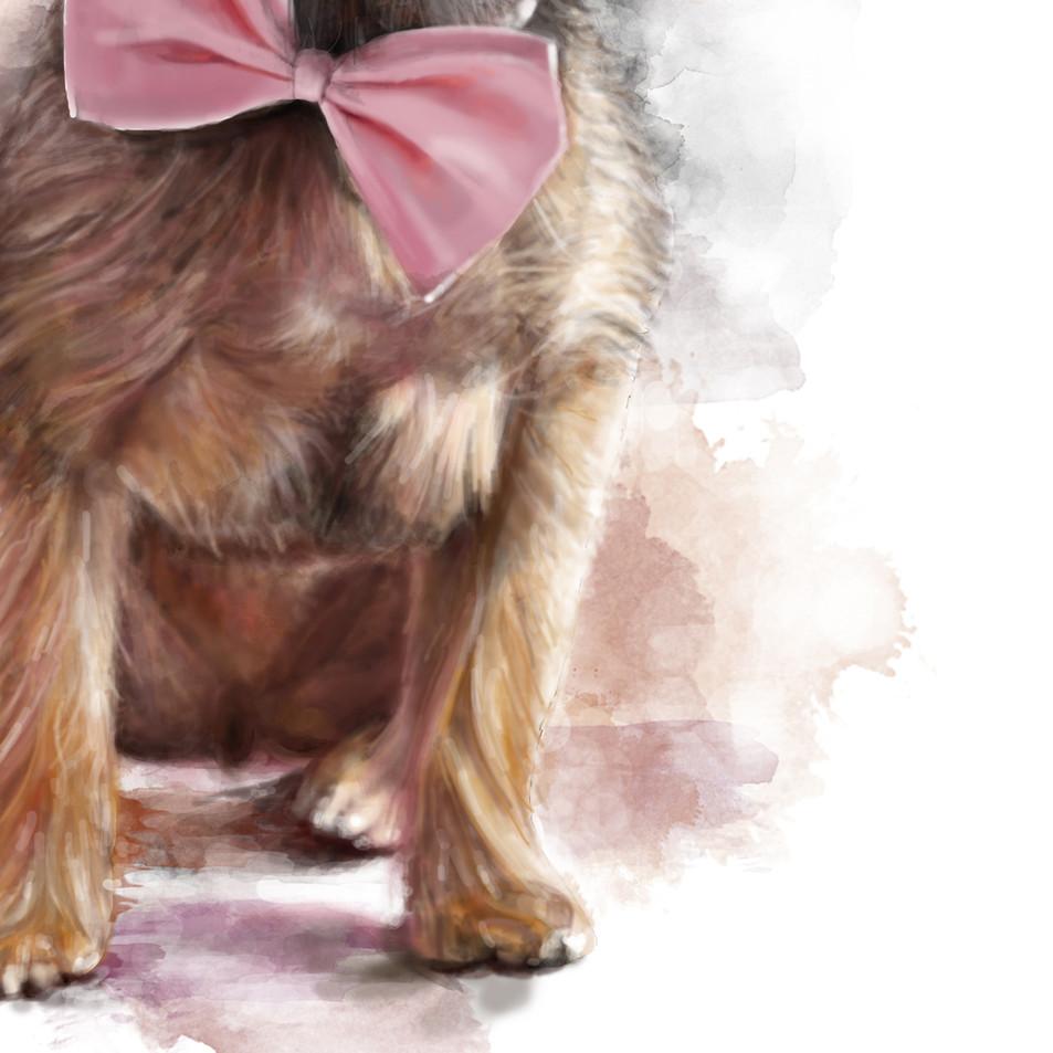 Bella bow tie.jpg