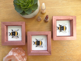 Quilled bee 2.JPG