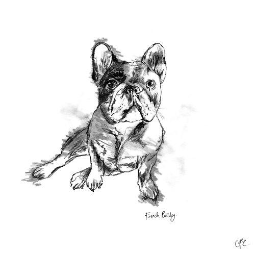 5B & Gold - French Bulldog Print With Gold Leaf