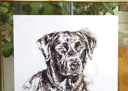 Bespoke 5B & Gold Pet Portrait Print With Gold Leaf