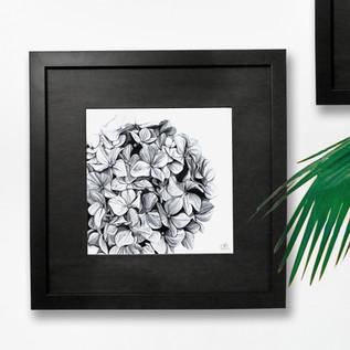 Florals Hydrangea.jpg